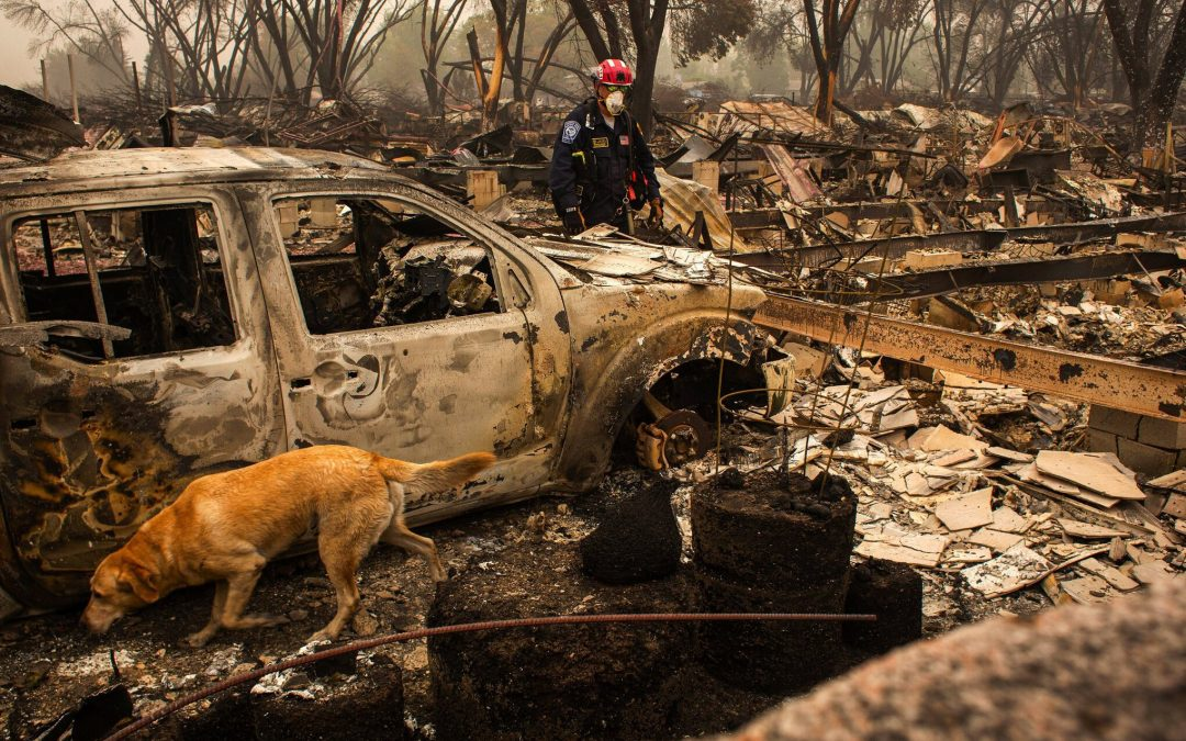 Oregon's worst urban fire in history as told by Chief Scientist Dr. Dominick DellaSala
