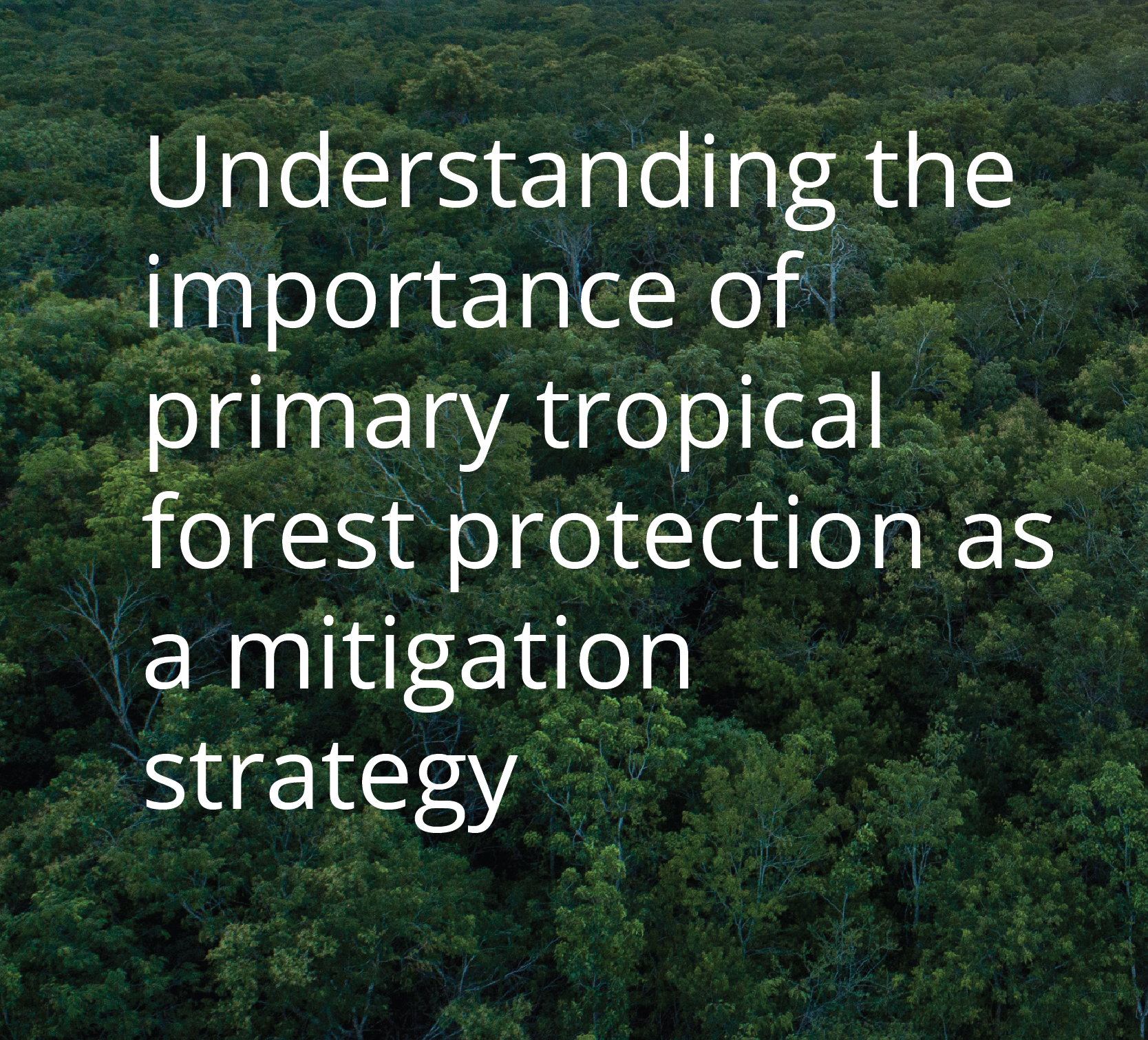 Understanding the importance of primary tropical forest protection as a mitigation strategy